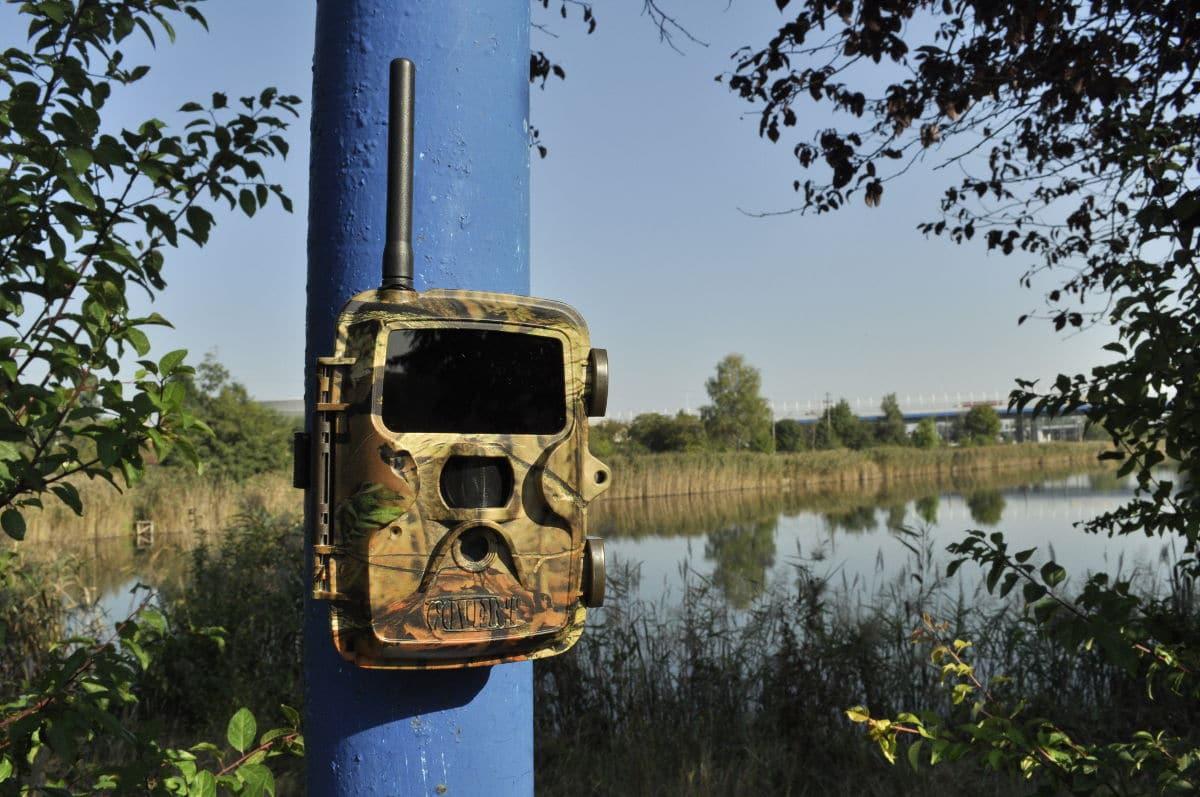 Ochrona stawów rybnych