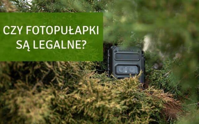 czy fotopułapka jest legalna?